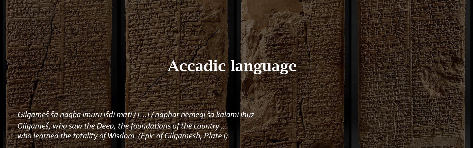 Accadic-language-Alif pisa